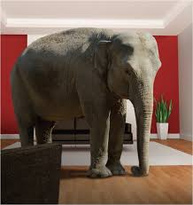 elephant living room elephant in the room free online home decor techhungry us