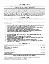 sample resume for project manager professional resumes example