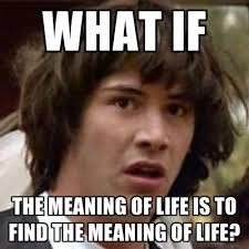 The Meaning Of Meme - what if the meaning of life is to find the meaning of life