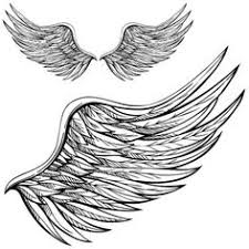 i have often thought about getting wings i love these
