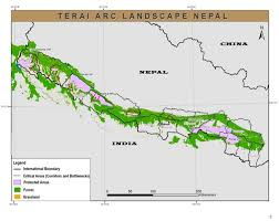 Map Of Nepal And China by Teas To Protect Tigers Rhinos And Elephants Wwf Uk Blog