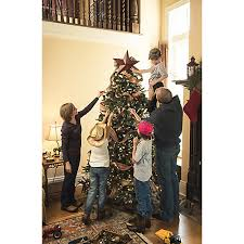 caring for live christmas trees tractor supply co