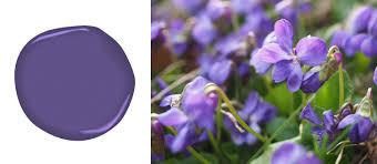 benjamin moore deep purple colors pantone 2018 color of the year ultra violet taleghan us