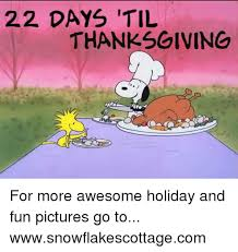 22 days til thanksgiving for more awesome and pictures