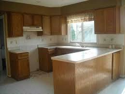 Update Oak Kitchen Cabinets 45 Best Oak Kitchen Cabinets Images On Pinterest Oak Kitchens