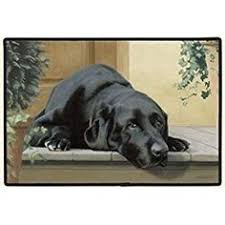 Wipe Your Paws Coir Doormat Wipe Your Paws Coir Doormat By Castle Mats Size 18 X 30 Inches