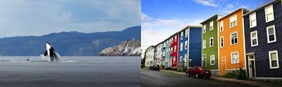Calgary Registered Nurse Jobs Travelnurse Travel Nursing Canada Prince George Bc