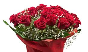 roses wholesale roses wholesale at an price lci mag