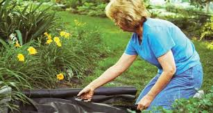 Home Depot Flower Projects - free 200 home depot garden club giveaway u2014 veggie gardening tips