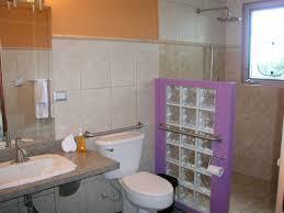 Bathroom Accessories Stores by Handicap Bathroom Bars Bathroom Design Handicap Bathroom