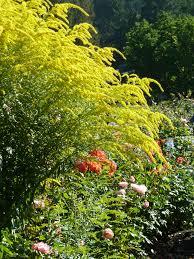 Sunken Gardens Family Membership Butchart Gardens The Flourists U0027 Notebook