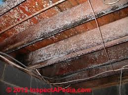 Removing Mold From Ceiling by Very Mold Contaminated Floor Framing And Subfloor C D Friedman
