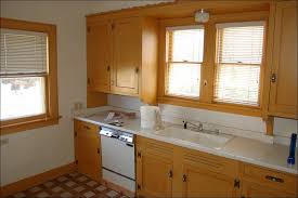 Cost To Paint Kitchen Cabinets Professionally by Kitchen Paint Grade Cabinets Paint Finish For Cabinets How Do