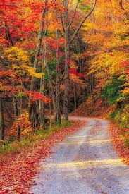 bellas imagenes otoñales pin de janet burke en autumn my favorite season pinterest otoño
