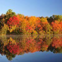 minnesota fall colors progress bob country