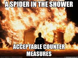 Shower Spider Meme - a spider in the shower acceptable counter measures burning house