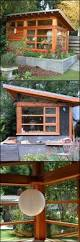 tips for building a house 831 best tips for building a shed images on pinterest home