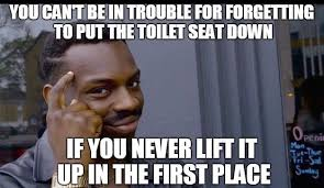 Toilet Seat Down Meme - when you have to share a bathroom beheading boredom