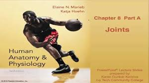 Advanced Anatomy And Physiology Anatomy U0026 Physiology Chapter 8 Lecture Part A Joints Youtube