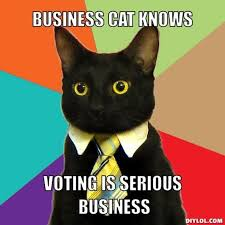 Funny Voting Memes - 20 sarcastic and funny voting memes that can totally make your day