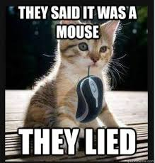 Funny Kitten Meme - looks like someone finally caught a mouse furry funnies