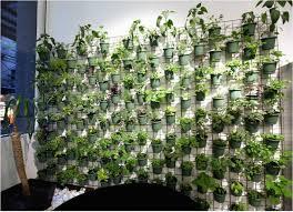 Indoor Hanging Garden Ideas Indoor Hanging Garden Ideas Fresh 5158 Best Planters And