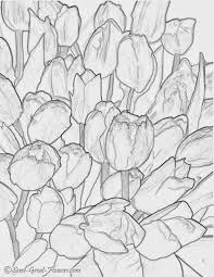 Hard Flower Coloring Pages - 55 best difficult coloring pages images on pinterest coloring