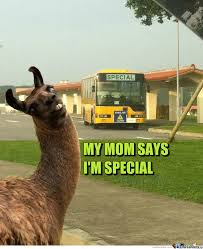 my mom says i m special by clairvoyant meme center