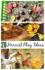 harvest sensory bins for fall sensory play
