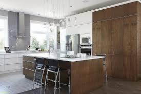 peinture pour meuble de cuisine castorama cuisine peinture pour meuble de cuisine stratifié inspirational 100
