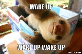 Alf Meme - image alf wake up meme jpg unturned bunker wiki fandom powered
