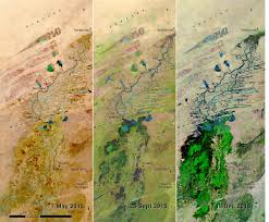 Niger Africa Map by Landscape Diversity And Dynamics Of The Inland Niger Delta West