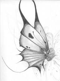 sketch drawing of butterfly standing in the flowers drawing of