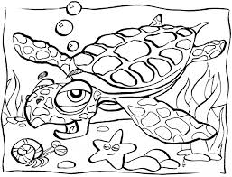 97 ideas sea animals coloring on spectaxmas download