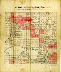 State Of Michigan Plat Maps by County Of Montmorency Town 29 Range 1 East 1874 Scanned Maps