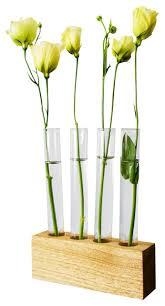 Test Tube Flower Vases Test Tube Vase Houzz