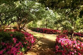 Botanical Gardens Houston Garden Dialogues Houston Asakura Robinson Company