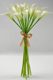 Silk Calla Lilies Calla Lilies