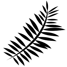 Free Picture Leaf Nature Fern Silhouette Nature Fern Free Image On Pixabay