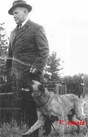 belgian sheepdog history history malinois pinterest belgian malinois vintage dog and dog