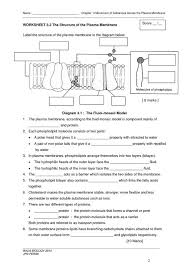 the cell worksheet worksheets