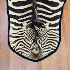 Animal Skin Rugs For Sale Burchell U0027s Zebra Skin Rug Sw2729 For Sale At Safariworks Taxidermy
