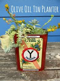 make a succulent planter from an olive oil tin make something daily