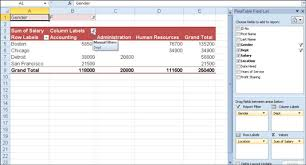 how to sort a pivot table filtering and sorting an excel 2010 pivot table dummies
