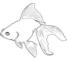 free fish printables kids coloring free kids coloring
