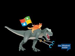 Windows Meme - celebrate the windows 10 ninjacat meme with new microsoft