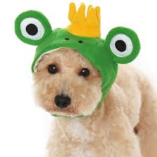 prince dog hat from bowwowsbest com dog caps hats and visors