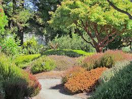 botanical gardens fort bragg ca festival of lights mendocino coast botanical gardens well worth a visit california