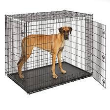 amazon black friday pet sales amazon com midwest solution series