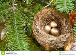 christmas tree birds nest royalty free stock image image 9759636